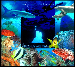 aqualocations_TheWorldCanSe